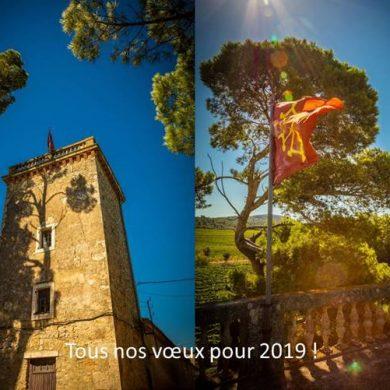 Meilleurs Voeux pour 2019 ! Happy New Year !